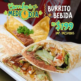 Gastronomia Mexicana - combo medio dia